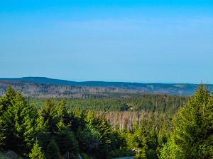 Aussicht Harzwanderung
