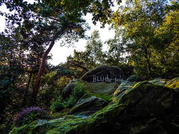 Blücherfels im Teutoburger Wald