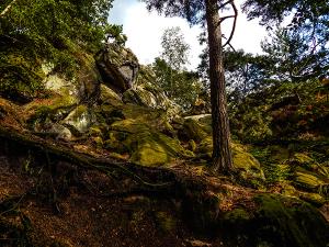 Dörenther Klippen im Teutoburger Wald