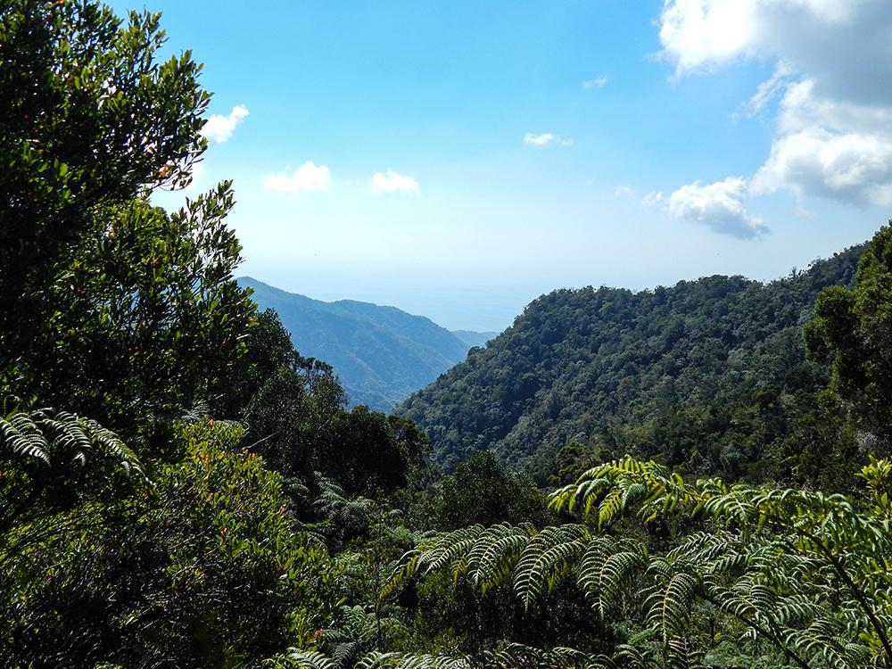 Kuba Rundreise - Sierra Maestra - Ausblick