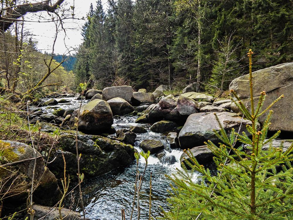 Wandern im Harz - Oker