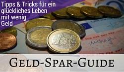 Der Geld-Spar-Guide - Der Weg zum Minimalismus