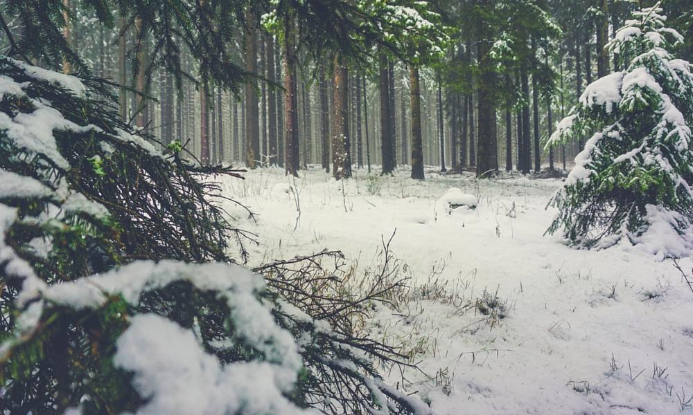 Wandern im Winter - Tipps und Tricks - 01