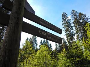 Schild Wanderwege
