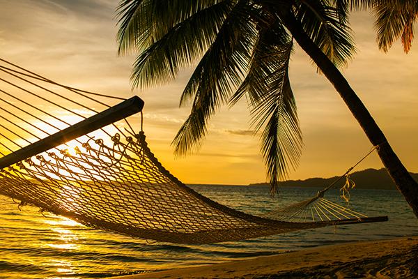 Hängematte als Alternative zum Zelt - Erholung, Entspannung, Glückseligkeit