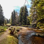 Wandern im Harz - Die kalte Bode bei Schierke