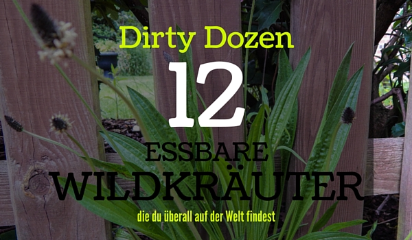 Essbare Wildkräuter - Dirty Dozen