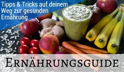 Der Ernährungsguide - Mehr Power auf Reisen und im Alltag